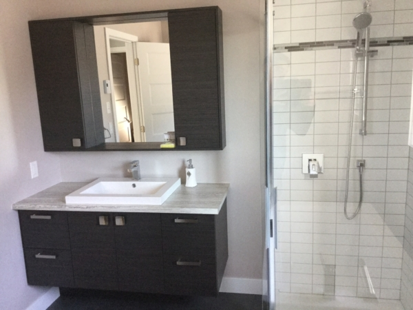 Salle de bain archives construction d st onge for Salle de bains douche saint paul